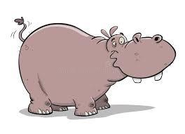<b>Fat Hippo</b>