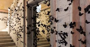 carlos amorales' swarm of thousands of <b>black butterflies</b> invades ...