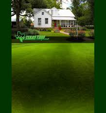 texas turf management hockley tx landscape design and lawn care professionals