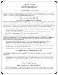 customer support director resume aaaaeroincus terrific it manager resume examples resume template goodlooking property manager resume sample adorable