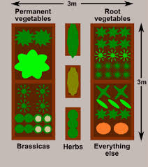 Small Picture Raised Bed Vegetable Garden Layout The Gardens