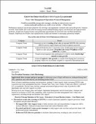 executive resume  amp  professional resume samplesresume for  s leadership