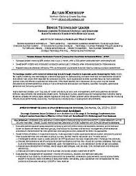 Executive Resume & Professional Resume Samples sample sales resume - after
