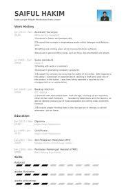 surveyor resume samples   visualcv resume samples databaseassistant surveyor resume samples