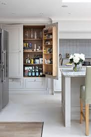 Kitchen Pantry Idea 18 Kitchen Pantry Ideas Designs Design Trends Premium Psd