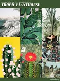 33 Best <b>Summer Prints</b> images | <b>Summer prints</b>, <b>Prints</b>, Spandex fabric