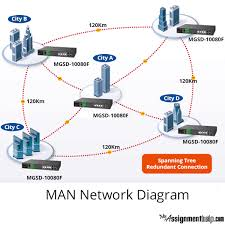 computer networking  amp  communication system assignment   network    man