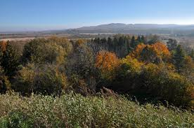 Northern Podillya National Nature Park