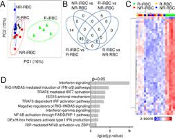 Microvesicles from malaria-infected red <b>blood</b> cells activate natural ...