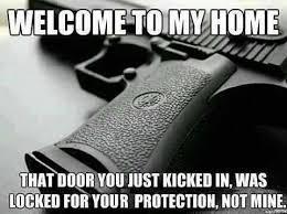 Image result for gun control funny meme