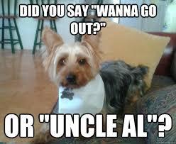 MIshearing Miniature Yorkie memes | quickmeme via Relatably.com