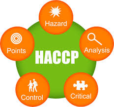 Image result for haccp certificate logo