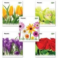 <b>Тетрадь</b> 48л, А5, клетка, <b>Brauberg ЭКО Цветы</b>, 401808   Parusbag