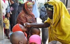 Nigeria three years <b>free</b> from <b>wild</b> poliovirus – GPEI