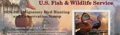 Buy <b>Duck</b> Stamps