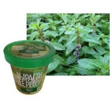 Набор для выращивания Зеленый капитал <b>Вырасти</b>, <b>дерево</b> ...