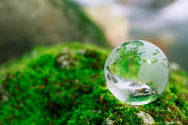environmental science personal statement of purpose for graduate  it will be an honor for us to assit you as well in the fulfillment of your professional dreams in environmental science