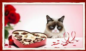 Image result for valentines grumpy cat