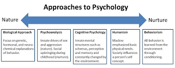 nature nurture in psychology   simply psychologynature nurture psychology