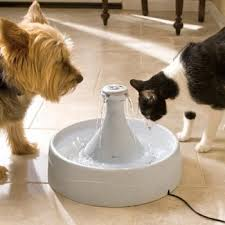 Автоматическая <b>поилка</b> для кошек и собак <b>Petsafe Drinkwell 360</b> ...
