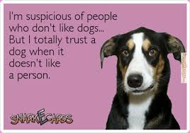 FunnyMemes.com • Funny memes - [Suspicious of people..] via Relatably.com