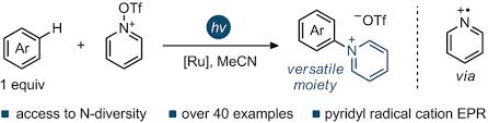 Pyridyl Radical <b>Cation</b> for C−H Amination of Arenes - Rössler ...