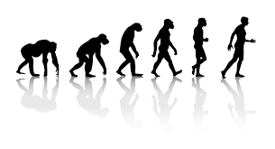 theory of evolution quotes like success darwin theory evolution of man