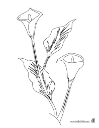 Small Picture 102 Flower Coloring Pages Customize And Print Pdf Coloring