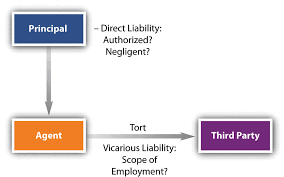 liability of principal and agent  termination of agencyagents for whom principals are vicariously liable