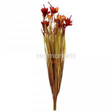<b>Растения BontiLand</b> в Калининграде (2000 товаров) 🥇