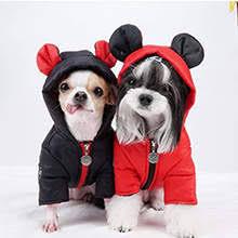 Гламурная одежда для <b>собак</b> - <b>Dog</b> Glamour. Одежда для ...