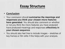 writing your micro essay essay structure  conclusion