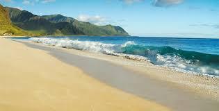 Resultat d'imatges de beach