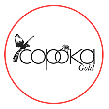 Сорока Gold - Jewelry & Watches Company - Rostov-on-Don ...