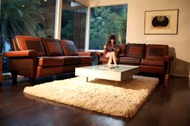 room brown sofas red