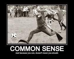 common sense definition essay example   homework for you common sense definition essay example img