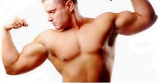 Resultado de imagem para homem musculoso