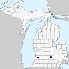 Cenchrus purpurascens - Michigan Flora