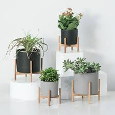 <b>Nordic</b> Desktop Solid Wood Flower Stand <b>Cement</b> Fleshy Flower Pot ...