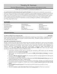 sample resume for real estate ceo chief executive officer resume samples mary elizabeth brefash real estate agent resume real estate resume