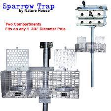 nh sparrow trap gif    Trapping House Sparrows Re Re De
