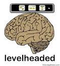 Images & Illustrations of level-headed