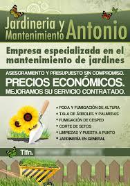 flyers promocional para empresa de jardinería gardening company