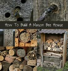 how to build a mason bee house build diy mason