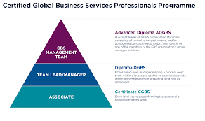 cima chartered institute of management accountants the certified global business services professionals programme comprises three levels of qualification aligned to job role and underpinned by continuous