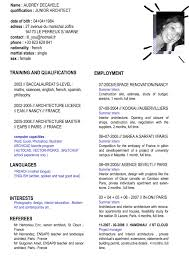 english resume purchase procurement executive cv