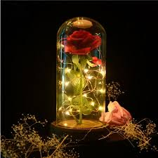 Beauty and The Beast Rose <b>Preserved Fresh</b> Flower Red Rose The ...