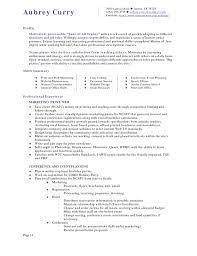functional resume sample hotel  seangarrette co   functional resume sample hotel a cbd b c  d a c  c a d  dollar