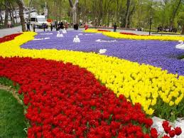<b>TULIP GARDEN</b> - Review of Emirgan Park, Istanbul, Turkey ...