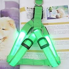 <b>LED</b> light pet chest <b>strap</b> dog <b>strap</b> flashing pet chest <b>strap luminous</b> ...